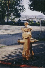 Mission$people-of-the-mission$hydrant itm$golden-hydrant.jpg