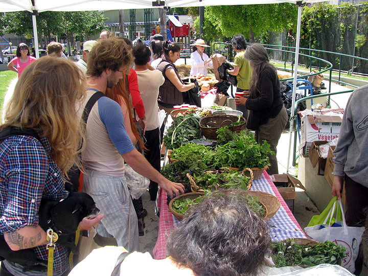 File:Free-farm-stand-greens 7954.jpg