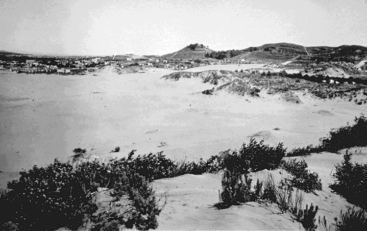 Richmond dunes looking towards lone mtn late 19th c.jpg