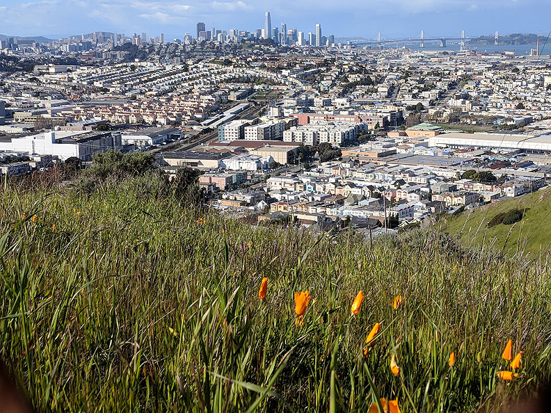 View-north-from-Bayview-Hill-w-flowers 20180325 164316.jpg
