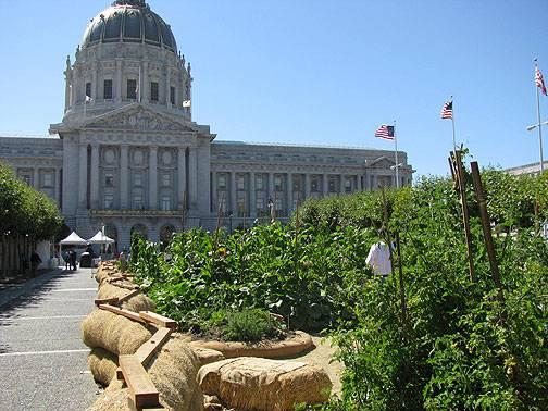 Victory Garden W City Hall Aug 08 3695