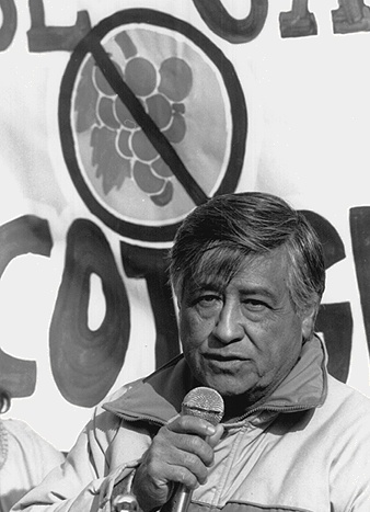 Cesar chavez essay | Research Paper Help for Students With Hectic ...