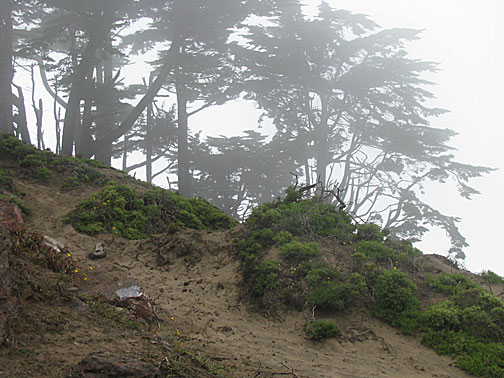File:Gv-peak-in-fog 3675.jpg