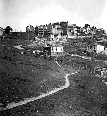 Eureka valley north slope apx roosevelt 1890s.jpg