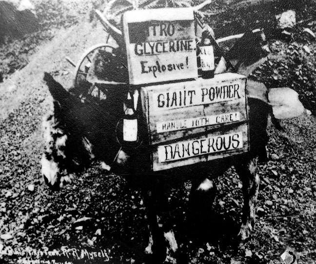 Image:Giant-powder-donkey.jpg