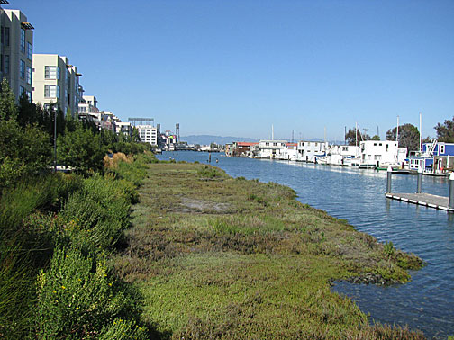 Mission-creek-easterly-both-sides 3532.jpg