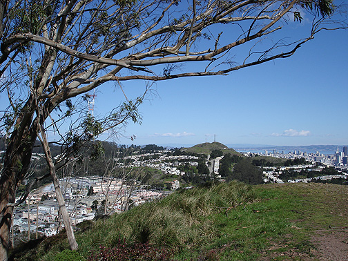 File:Mt-davidson-view-ne-w-tree-and-downtown1976.jpg