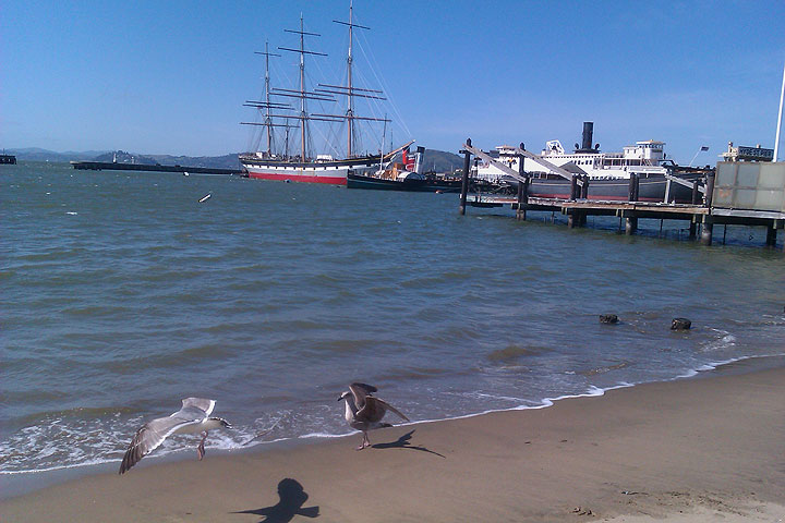 Image:Balclutha-w-aquatic-park-beach-and-seagulls-0290.jpg
