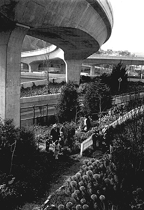 Ecology1$farm-under-freeway.jpg