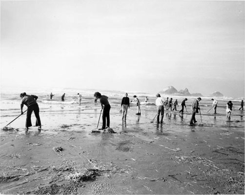 Oil spill cleanup ocean beach 1971 AAB-9966.jpg
