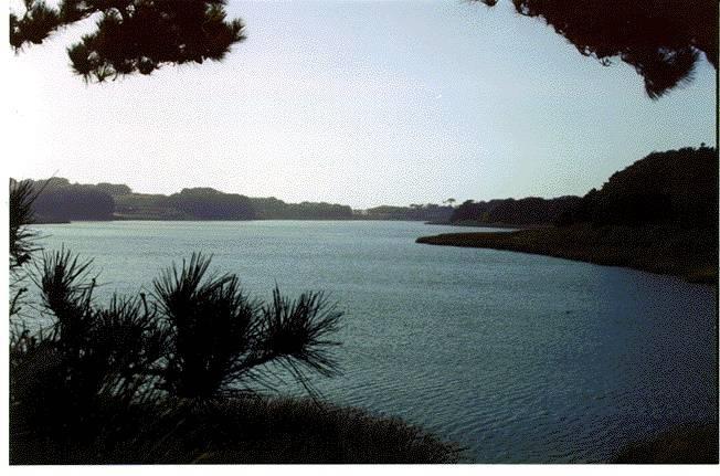 Lake Merced A Shipwreck Foundsf