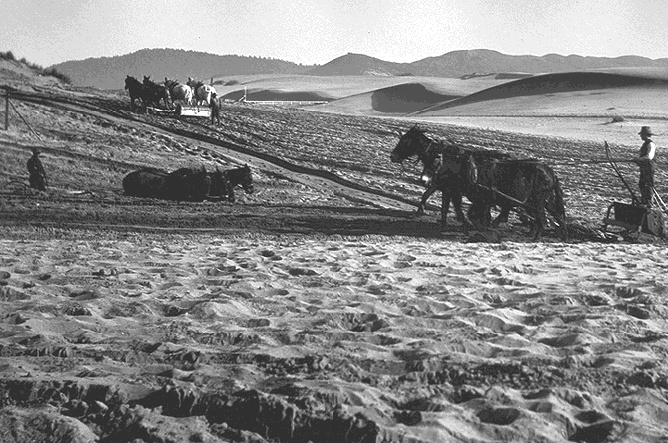 File:Richmond$plowing-dunes-with-horses.jpg