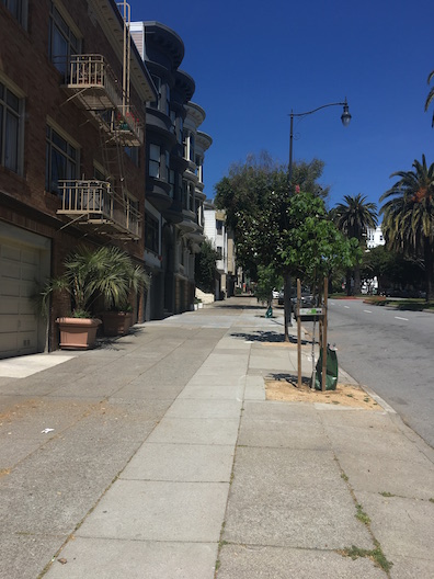 Wide Dolores Street sidewalks good for social distancing-Sarah Moir.JPG