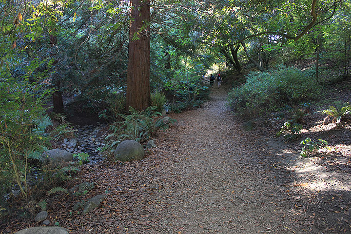 AIDS-grove-path 4494.jpg