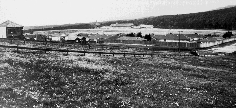 Racetrack-long-view-1900s.jpg