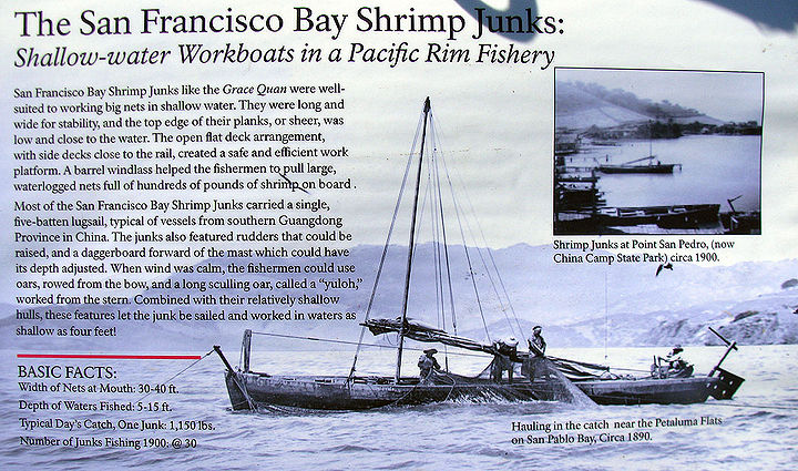 SF-Bay-Shrimp-Junks-explanation-and-display 2839.jpg