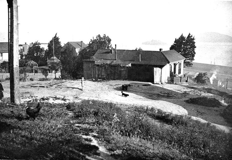 Early-settlement-on-Telegraph-Hill-with-chickens-&-dogs-in-the-1890s.jpg