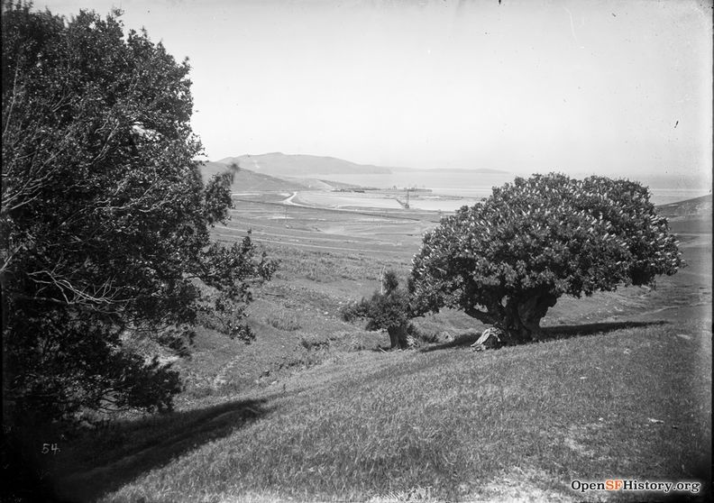 1907 Part of a Visitacion Valley set from Worden documenting Southern Pacific construction. View northerly toward the bay, from San Bruno Mountain above Brisbane. Bayview Hill in distance wnp15.760.jpg