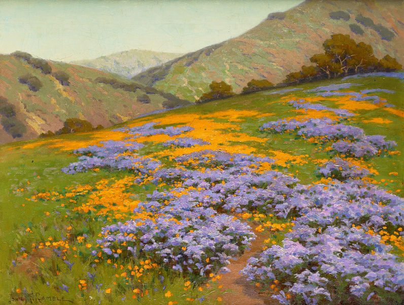 File:Wild Heliotrope and Poppies San Francisco by John Marshall Gamble betw-1893-1906.jpg